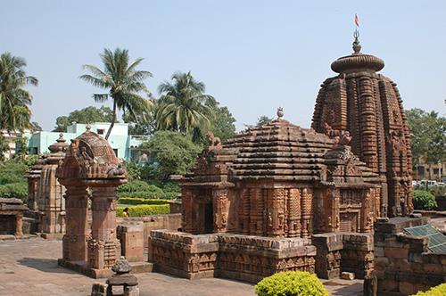 survival international odisha photos